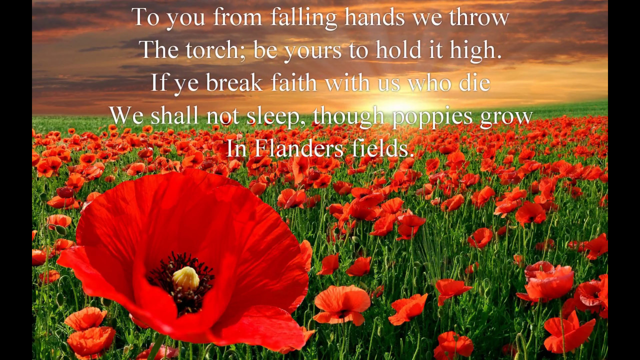 Remembrance Day Sayings Peace Wallpaper