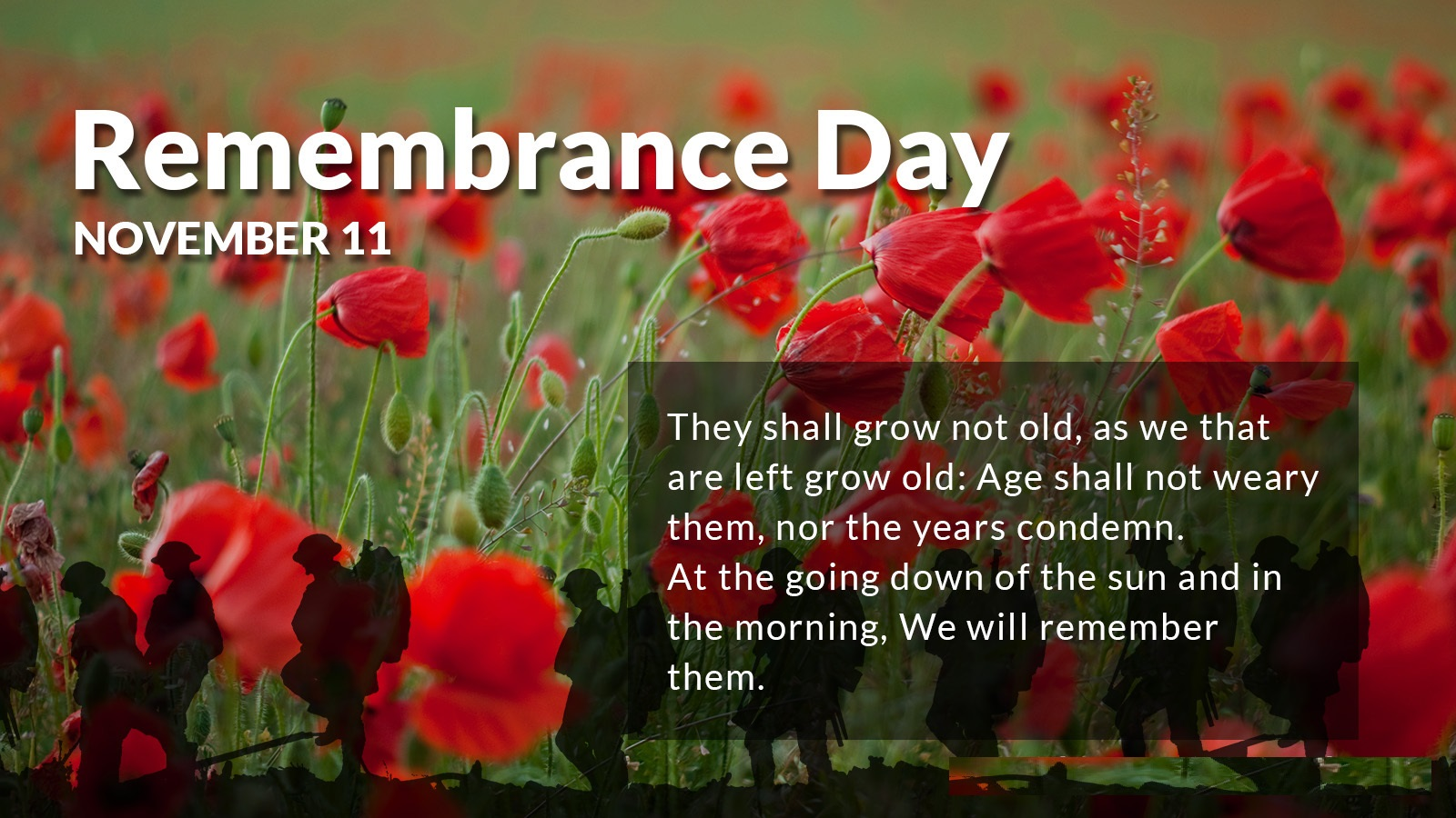 Remembrance Day Sayings Quotes For Whatsapp