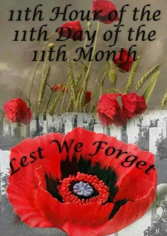 Remembrance Day USA Meaning And Quotes