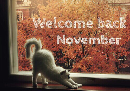 Welcome November Pinterest Images