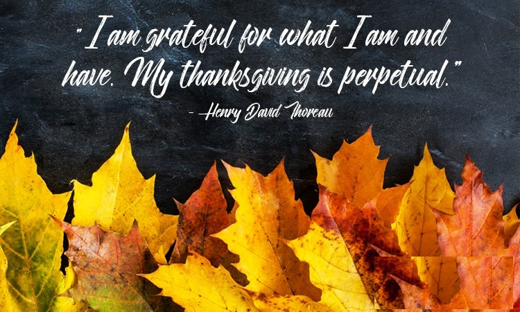 Thanksgiving Quotes Inspirational And Happiness