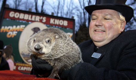 Funny Groundhog Day Pictures
