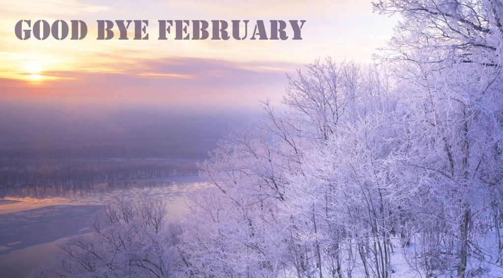 Good Bye February Pics