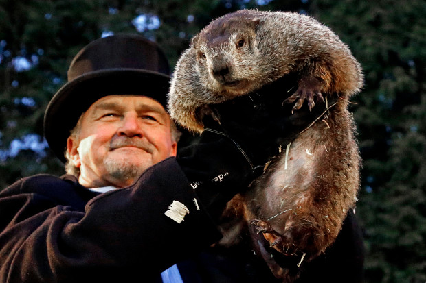 Groundhog Day Pictures