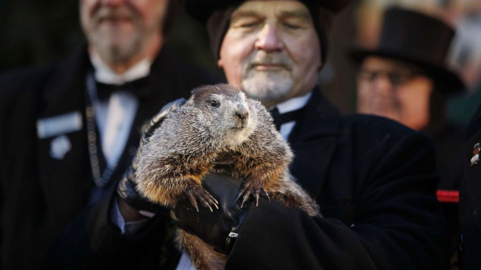 Groundhog Day Pictures and Quotes