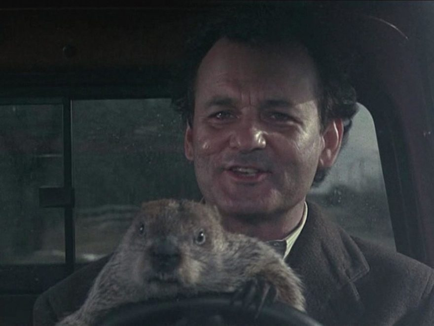 Groundhog Day Wallpaper Free