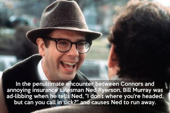 Quotes About Groundhog Day
