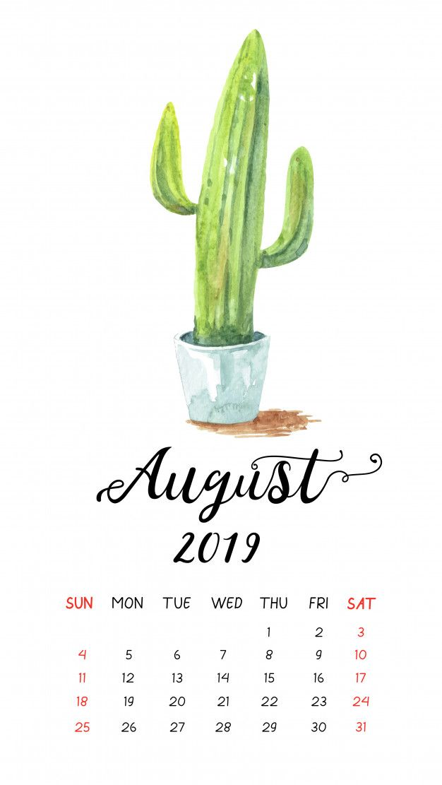 August 2019 iPhone Calendar HD Wallpaper