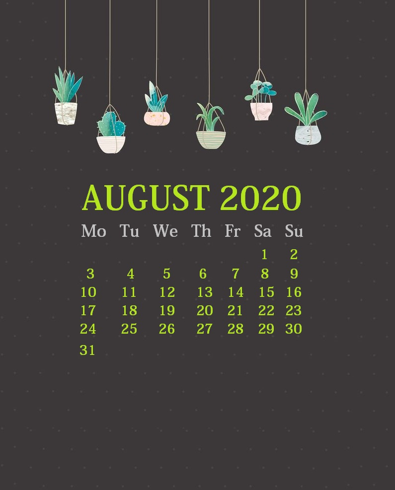 August 2020 Wallpaper For iPhone