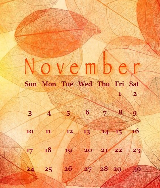 iPhone November 2019 Calendar Wallpaper