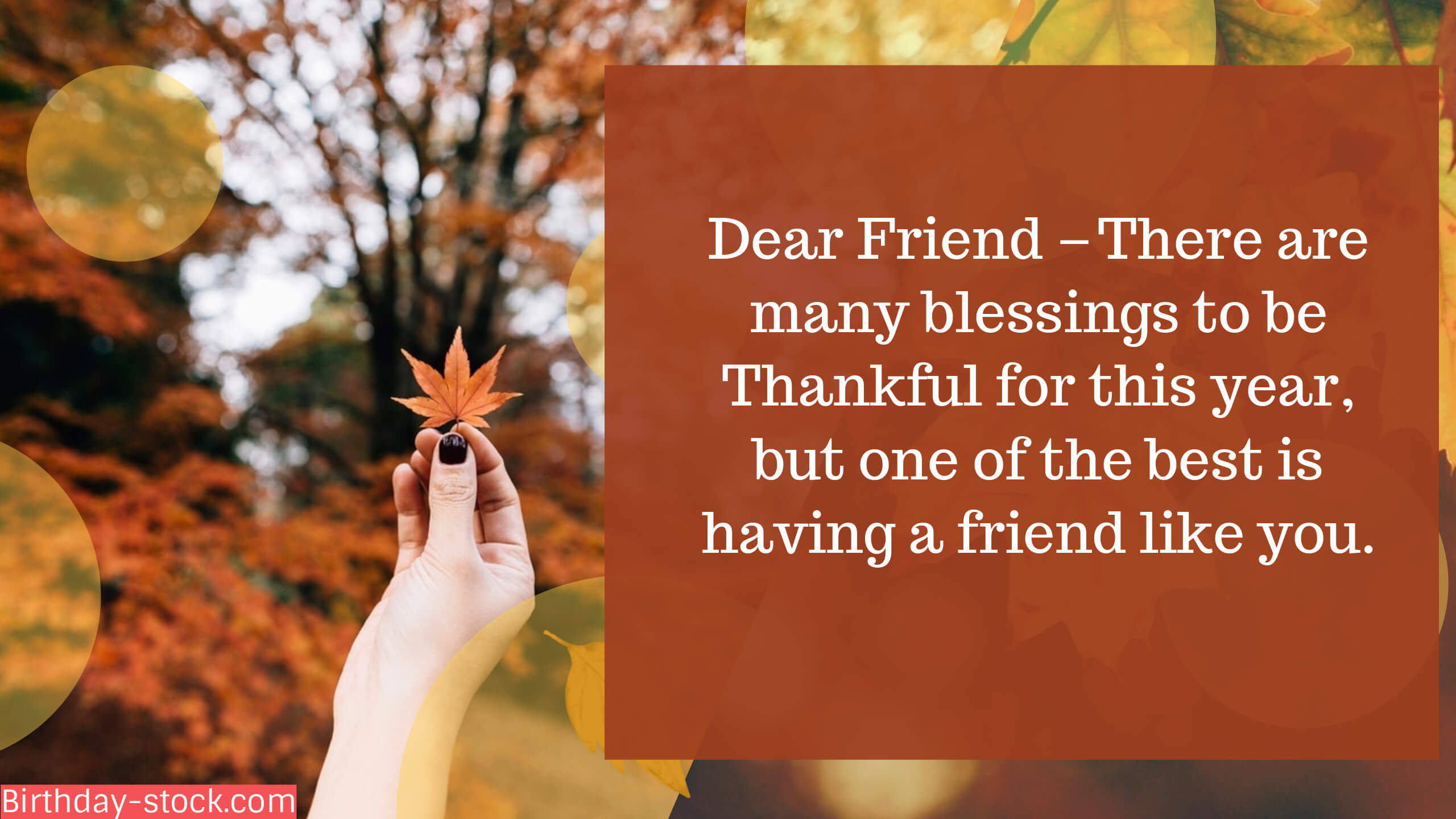 Happy Thanksgiving Quotes Greetings