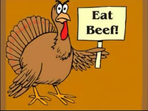 Thanksgiving Turkey Funny Images
