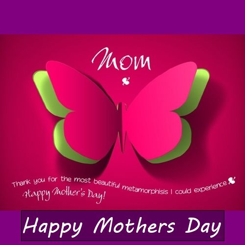 Fabric Mother's Day Whatsapp Dp